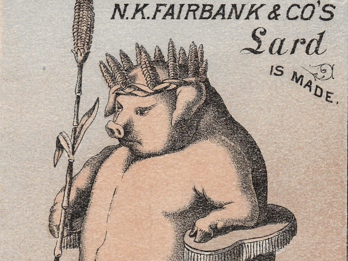 Sample Hog From Which N.K. Fairbank & CO's LARD is Made. Corn is King