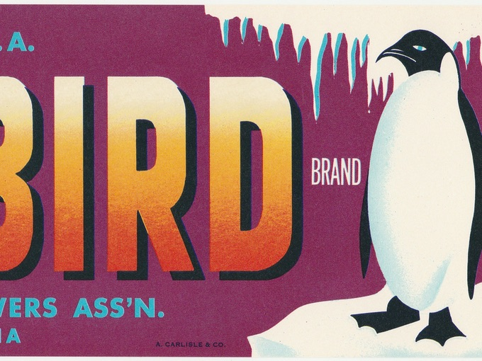 Polar Bird Brand, Royal Valley Fruit Growers Ass'n, Crate Label — Reedley, California
